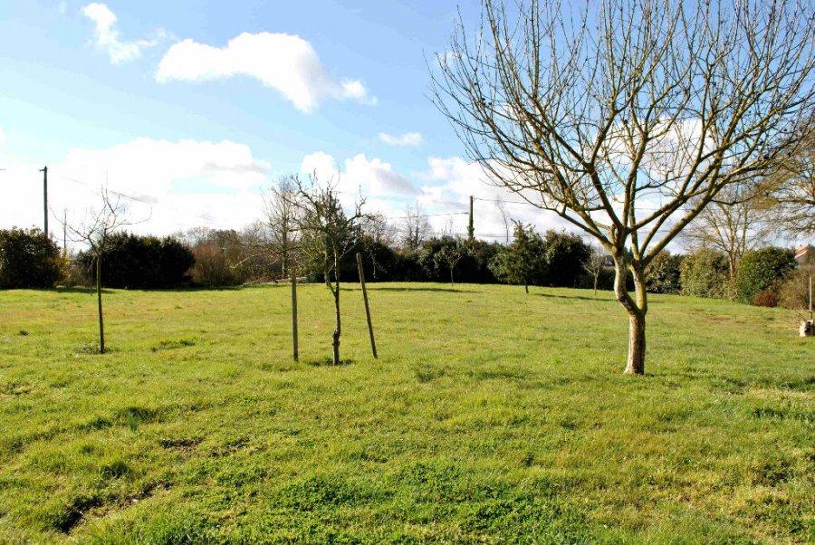 Acheter un terrain constructible acheter un terrain for Que peut on construire sur un terrain agricole