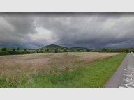 Terrain constructible à vendre à Thionville - Réf. 6052674