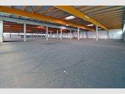 Halle zur Miete in Trier - Ref. 5005650
