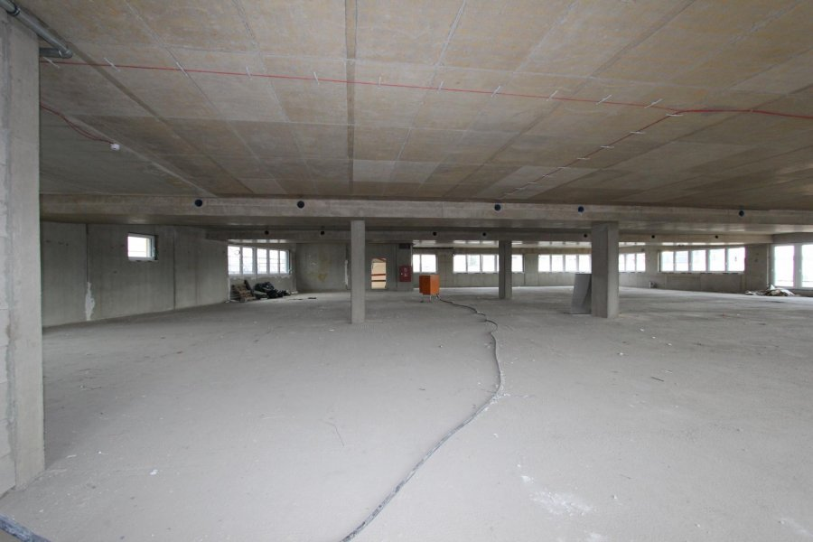 louer local commercial 0 chambre 466 m² luxembourg photo 4