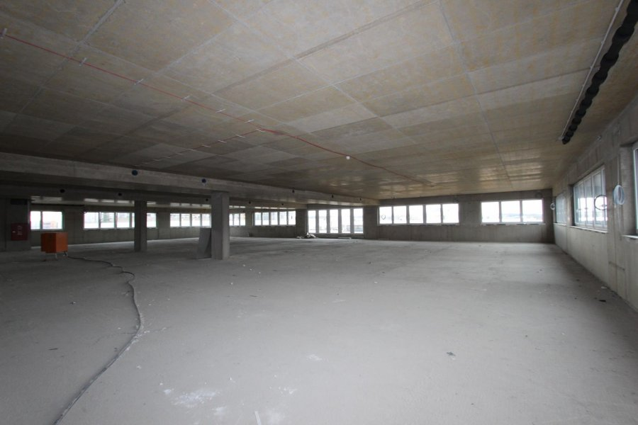 louer local commercial 0 chambre 466 m² luxembourg photo 1