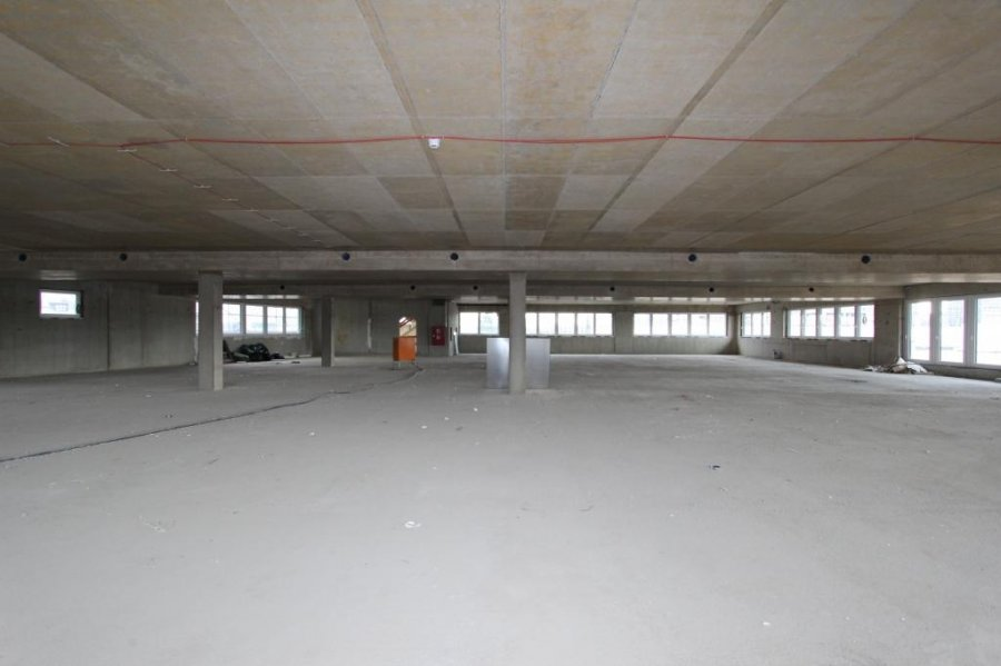 louer local commercial 0 chambre 466 m² luxembourg photo 2