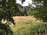 Terrain constructible à vendre à Gérardmer - Réf. 5934162