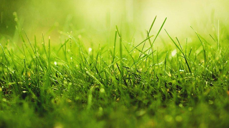 acheter terrain constructible 0 pièce 0 m² pournoy-la-grasse photo 1