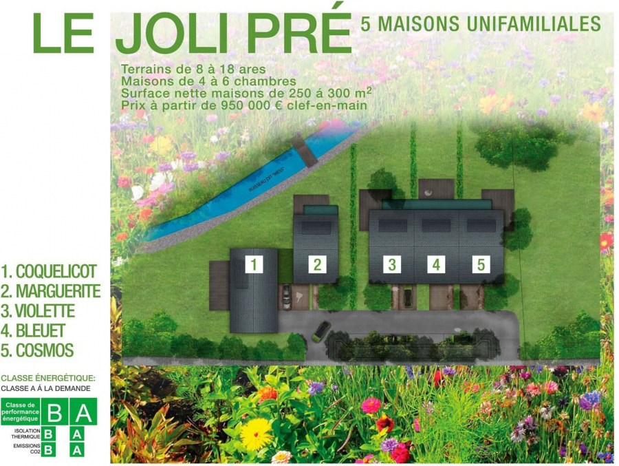 acheter maison individuelle 11 chambres 480 m² ehlange photo 4