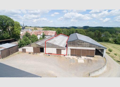 Entrepôt à louer à Leidenborn (DE) - Réf. 7026018