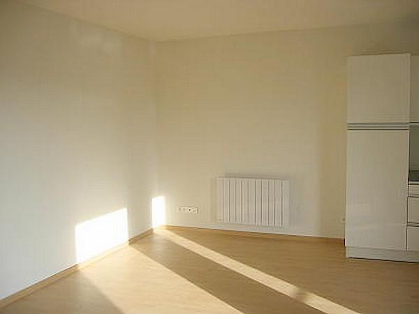 louer appartement 3 pièces 62 m² nancy photo 3