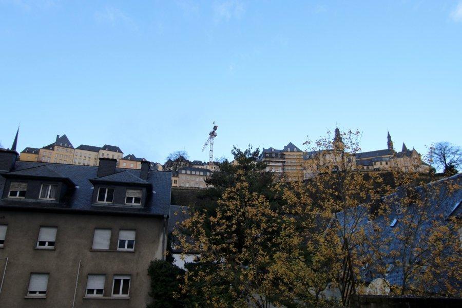 Appartement à louer 1 chambre à Luxembourg-Grund