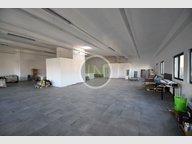 Retail for rent in Bertrange - Ref. 6962530