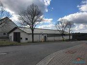 Entrepôt à louer à Nachtmanderscheid - Réf. 6165106