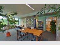 Bureau à louer à Windhof (Koerich) - Réf. 6624626