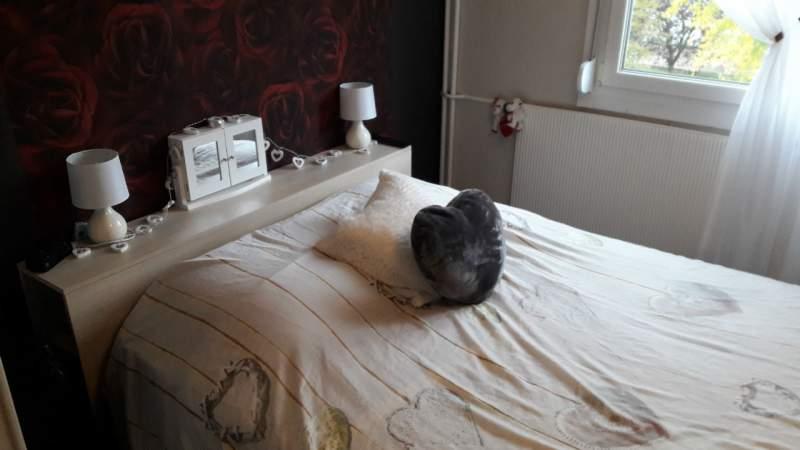 acheter appartement 4 pièces 65.28 m² saint-max photo 6