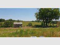 Terrain constructible à vendre à Pommérieux - Réf. 7186802