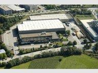 Bureau à louer à Luxembourg-Gasperich - Réf. 6657410
