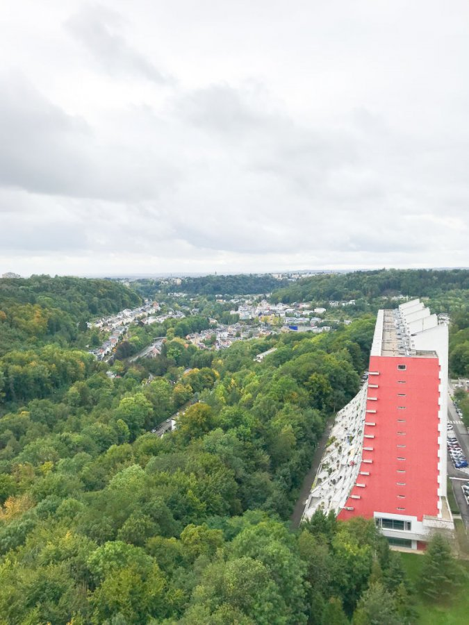 acheter local commercial 0 chambre 573 m² luxembourg photo 5
