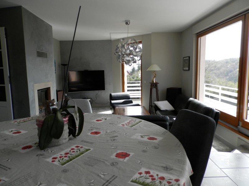 Maison individuelle en vente barr 240 m 669 000 for Architecte lyon maison individuelle