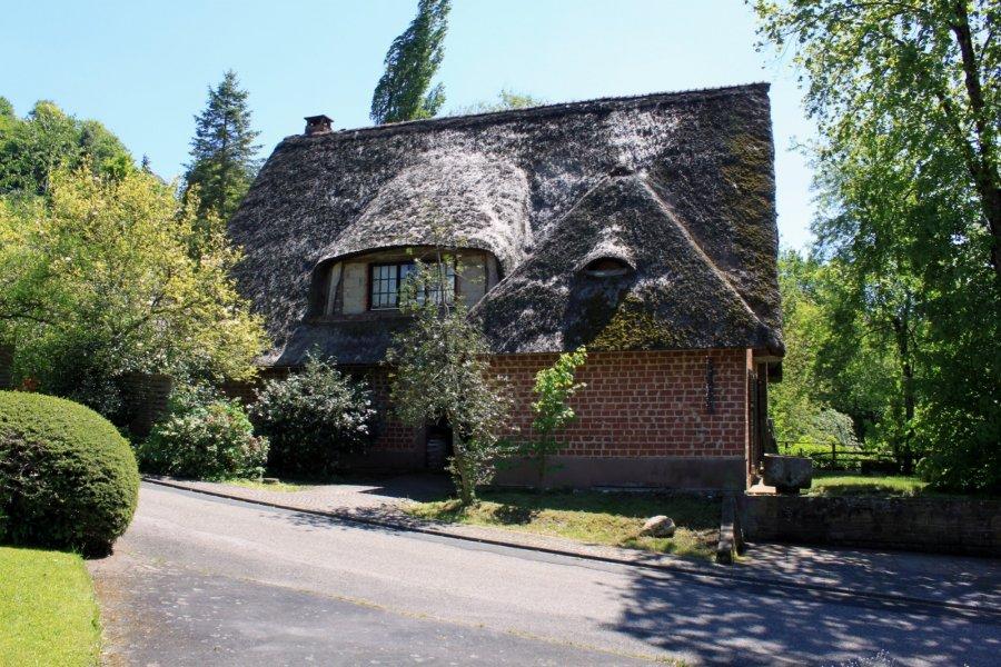 herrenhaus kaufen 5 zimmer 320 m² utscheid foto 1