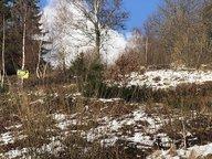 Terrain constructible à vendre à Gérardmer - Réf. 6677410