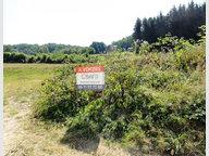 Terrain constructible à vendre à Raon-aux-Bois - Réf. 6067618