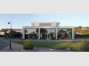 Büro zur Miete in Remich - Ref. 5948850