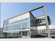 Bureau à louer à Munsbach - Réf. 5121714
