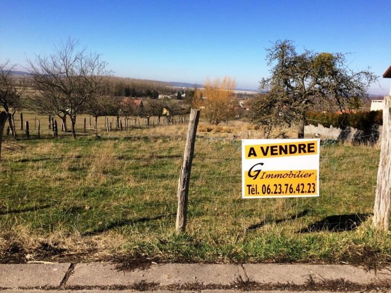 acheter terrain constructible 0 pièce 3500 m² damelevières photo 1