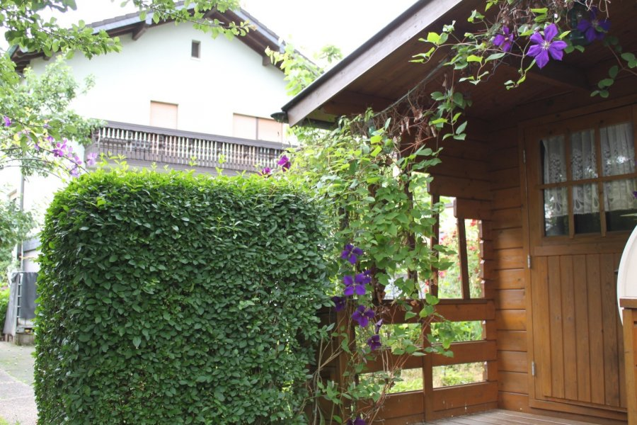 acheter maison individuelle 7 pièces 160 m² sinspelt photo 4