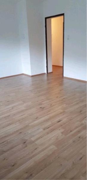 renditeobjekt kaufen 24 zimmer 450 m² hehlen foto 2