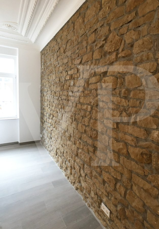 investment building for buy 0 bedroom 400 m² luxembourg photo 3