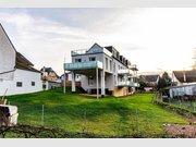 Appartement à vendre 3 Pièces à Longuich - Réf. 7239362