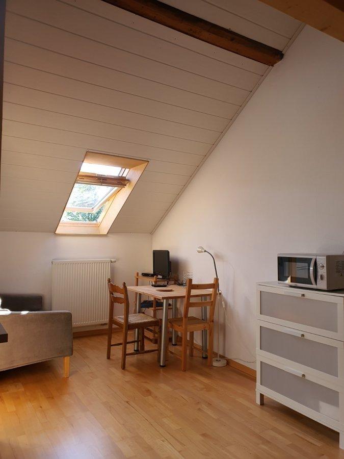 wohnung mieten 0 zimmer 45 m² nittel foto 4