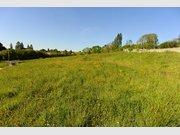 Terrain constructible à vendre à La Ferté-Bernard - Réf. 6401218