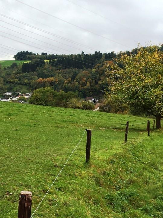 bauland kaufen 0 zimmer 7215 m² mettendorf foto 5