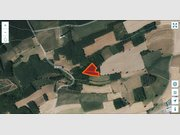 Kein Bauland zum Kauf in Consthum - Ref. 6176226