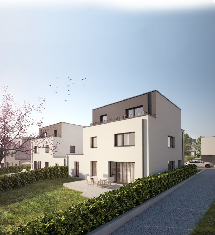 housing project for buy 0 bedroom 203 to 210 m² differdange photo 5