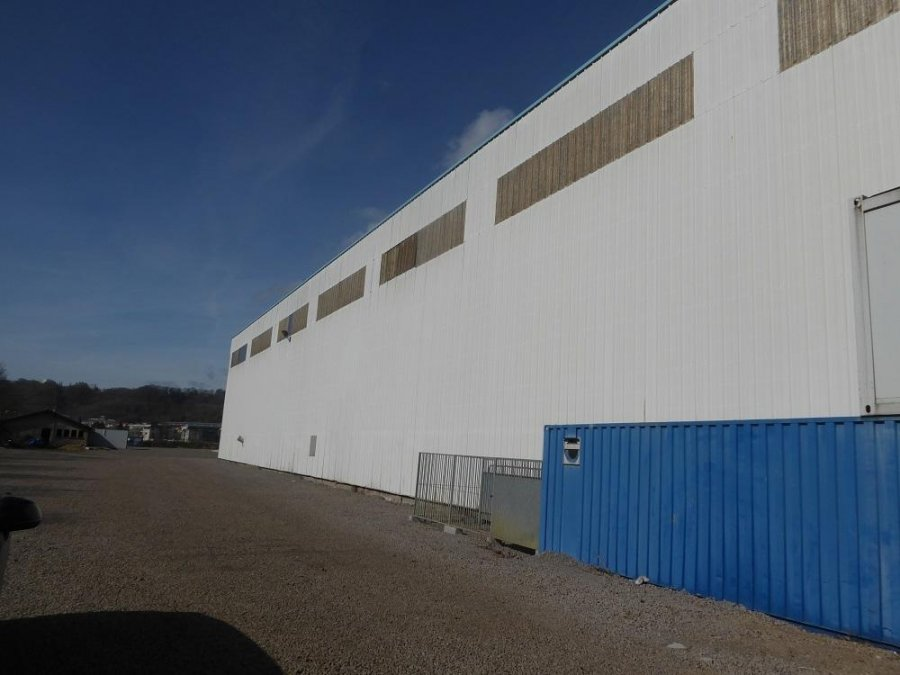 acheter entrepôt 1 pièce 7800 m² longwy photo 2