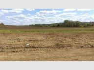 Terrain constructible à vendre à Lorry-Mardigny - Réf. 6127346