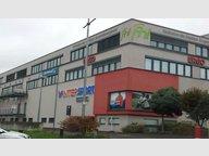 Bureau à louer à Bertrange - Réf. 6541042