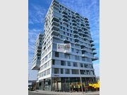 Apartment for rent 1 bedroom in Belval - Ref. 7200498