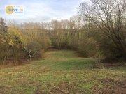Terrain constructible à vendre à Wincheringen - Réf. 6541298