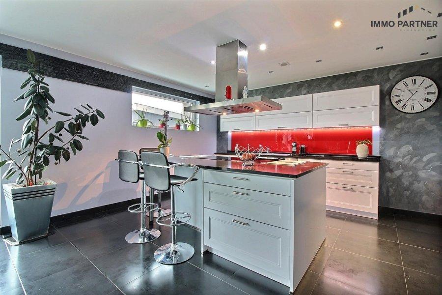 acheter maison 5 chambres 330 m² troisvierges photo 3