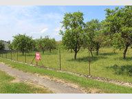 Terrain constructible à vendre à Hannonville-Suzémont - Réf. 5999107