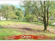 Terrain constructible à vendre à Saulxures-sur-Moselotte - Réf. 6110995