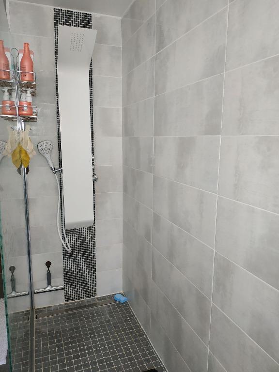 acheter maison 0 pièce 172 m² saint-louis photo 3