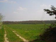 Terrain constructible à vendre à Cuvry - Réf. 5456419