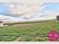 Terrain constructible à vendre à Maxey-sur-Vaise - Réf. 7096099