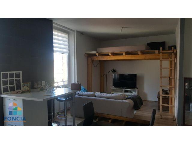 louer appartement 2 pièces 56 m² saint-dié-des-vosges photo 4