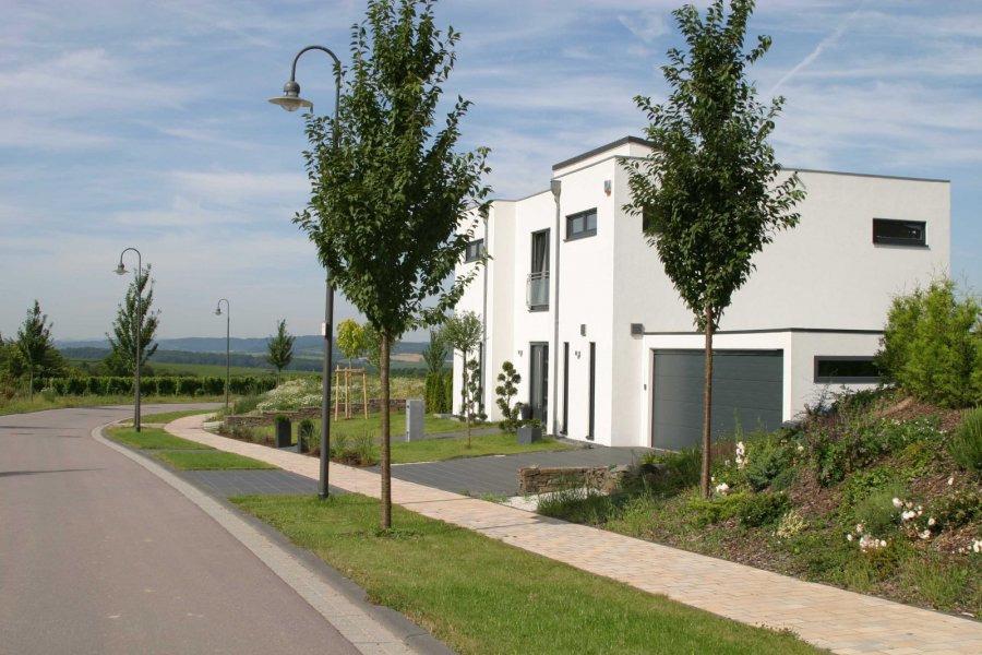 acheter terrain constructible 0 pièce 0 m² wincheringen photo 3