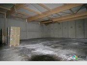 Entrepôt à louer à Bertrange - Réf. 6090275