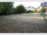 Terrain constructible à vendre à Grosbliederstroff - Réf. 6165555